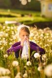 Flickan i äng och har hösnuva eller allergi Arkivbilder