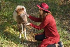 Flickan i den röda koftan med hästen Arkivbilder