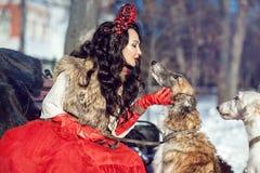 Flickan i en pälsväst och en röd klänning som går med hunden Arkivbild