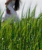 Flickan i en vit klänning på en bakgrund av grönt gräs Royaltyfri Foto