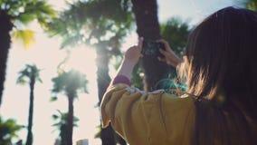 Flickan i ett gult omslag tar bilderna av palmträd på telefonen på en solig dag i en närbild arkivfilmer