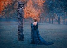 Flickan i lång blå s-klänning med kala skuldror går i dimmiga skogkvinnavädjaner till världsfrämmande övernaturligt mörker arkivbilder