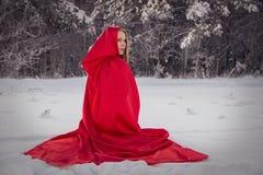 Flickan i liten röd ridninghuv för dräkt med hunden gillar en varg fotografering för bildbyråer