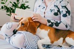 Flickan i pyjamas läser en bok hemma med en beaglevalphund Beaglet är lögner på knä för flicka` s royaltyfri bild