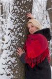 Flickan i vinterträ. Arkivfoton