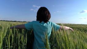 Flickan kör längs den gröna veteåkern arkivfilmer