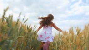 Flickan kör längs vetefältet arkivfilmer