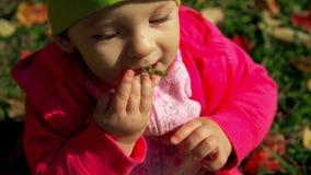 Flickan knuffar ett grönt blad i hennes mun Den gulliga lilla flickan i nedgången sitter på gräset och lekarna med stupade gula o arkivfilmer