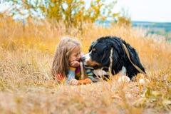 flickan ligger bredvid den stora hunden Berner Sennenhund fotografering för bildbyråer