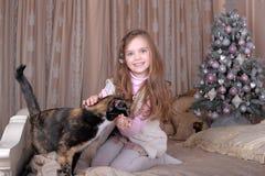 Flickan matar hennes katt Royaltyfria Bilder