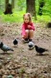 Flickan matar stads- duvor duvor i parkera Royaltyfri Bild