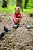 Flickan matar stads- duvor duvor i parkera Royaltyfria Foton