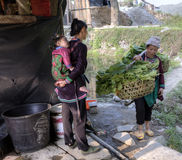 Flickan med behandla som ett barn på henne tillbaka, det mötta bärande oket för kvinnan Fotografering för Bildbyråer