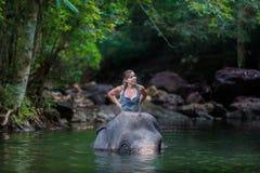 Flickan med elefanten Fotografering för Bildbyråer