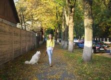 Flickan med en hund går i parkera arkivfoton