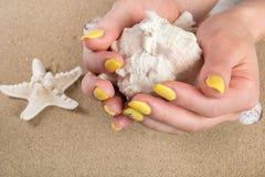 Flickan med guling spikar det hållande stora havsskalet i hand och sjöstjärna på strandsand i bakgrund fotografering för bildbyråer