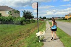 Flickan och hennes hund arkivfoto