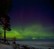 Flickan på kusten av Ladoga sjön som håller ögonen på de nordliga ljusen arkivfoton
