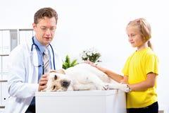 Flickan rymmer en hund i en veterinär- klinik arkivfoto