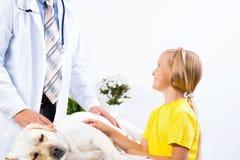 Flickan rymmer en hund i en veterinär- klinik Royaltyfri Bild