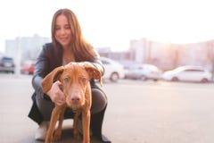 Flickan rymmer en rolig ung hund Ägare och valp i bakgrunden av stadslandskapet på solnedgången arkivbilder