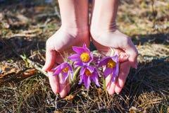Flickan rymmer ett dröm- gräs royaltyfri bild