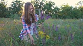 Flickan samlar blommor av salviaen stock video