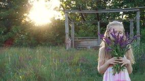 Flickan samlar blommor av salviaen p? solnedg?ngtiden stock video