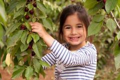 Flickan samlar och äter körsbär i trädgården Arkivfoto