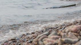 Flickan sitter på kusten av Baikal stock video