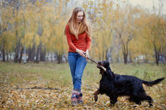 Flickan som spelar med hunden parkerar in Royaltyfri Bild