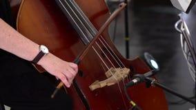 Flickan spelar basfiolen Händer trycker på raderna stock video