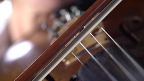 Flickan spelar fiolerna i ett rum Svart bakgrund arkivfilmer