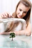Flickan täcker en liten konstgjord tree på bordlägga som är ekologisk Royaltyfri Bild