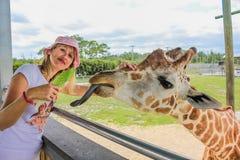 Flickan trycker på en giraff arkivbild