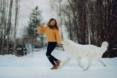 Flickan undervisar hur man kör rätt en hund i vinter parkerar Flickan med Maremmaen Skog på bakgrund fotografering för bildbyråer