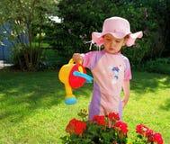 flickapink Fotografering för Bildbyråer