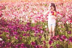 Flickaplockning blommar i ett fält Royaltyfri Bild