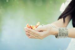 Flickas händer som rymmer godisen Royaltyfri Foto