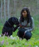 Flickasammanträde med hunden på äng Royaltyfri Fotografi