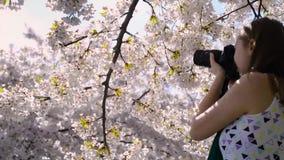 Flickaskytte för ung kvinna som tar bildkameradslr stock video