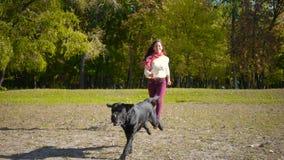Flickaspring med den svarta labrador hunden på hösten parkerar lager videofilmer