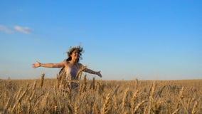Flickaspring på guld- vetefält och rörande mogna öron lager videofilmer
