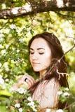 flickatree under Fotografering för Bildbyråer