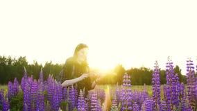 Flickaturist med en ryggsäck på solnedgång i ett lyckligt frodigt fält lager videofilmer