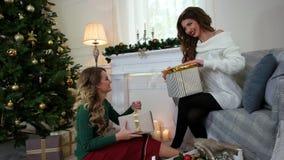 Flickavännen packade askar med gåvor, ferier för det nya året nära julgranen, kvinnor som har gyckel som talar och skrattar stock video