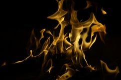 Flickering fire tongues on black background Stock Photography