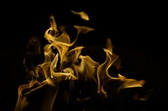 Flickering fire tongues on black background Stock Photos