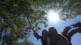 Flickor fångar ett foto från en telefon på en monopod lager videofilmer