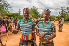 Flickor från den Hamar stammen på en populär marknad i Turmi som är ethiop Royaltyfri Foto